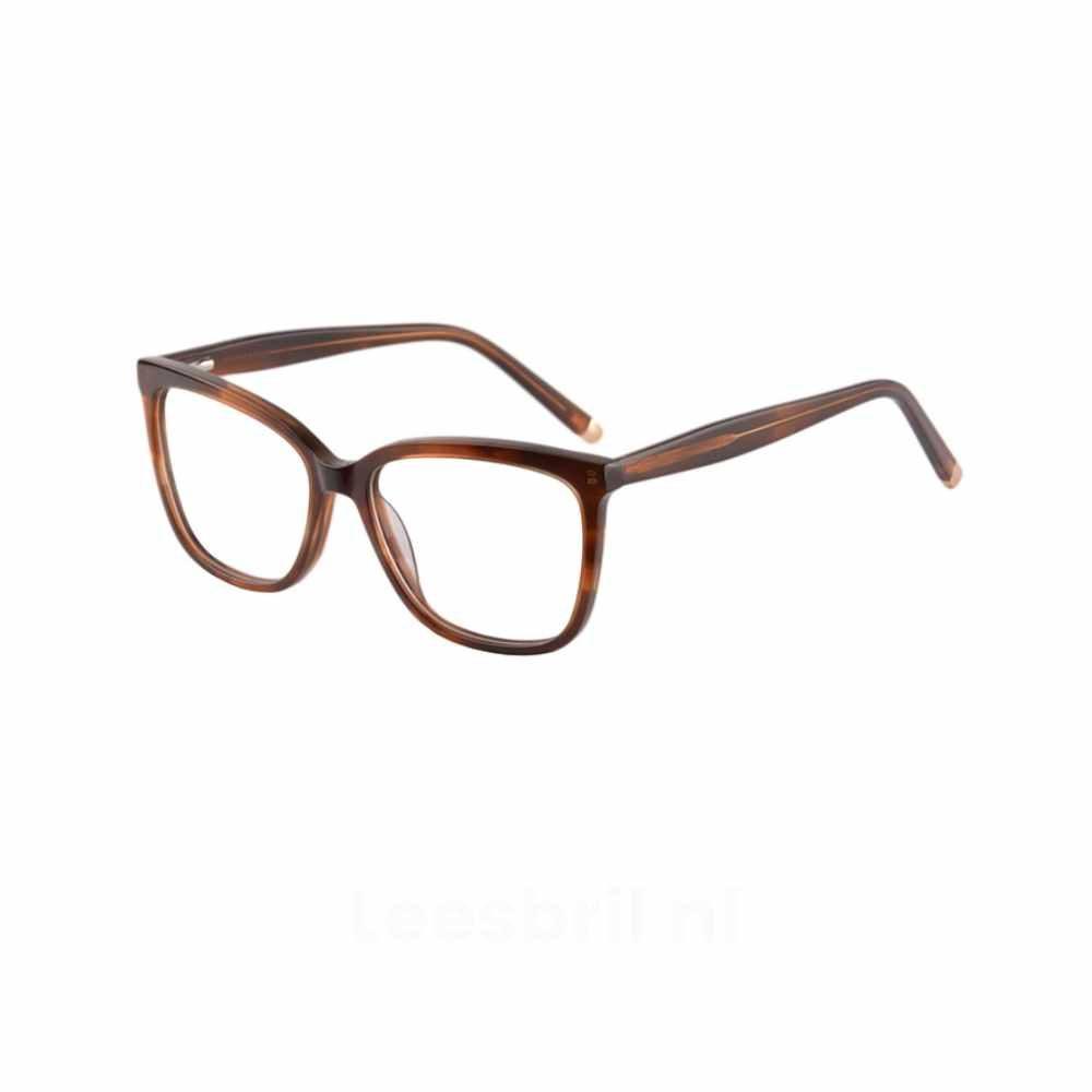Kyoto Multifocale Leesbril br 2